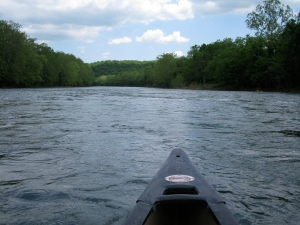 Canoeing the Shenandoah River 3