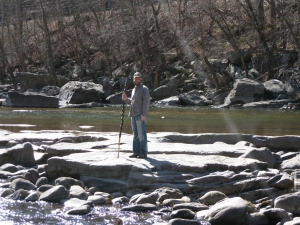 Walking Stick at the Dry's of New River