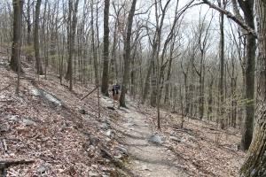 Downhill on the Appalachian Trail