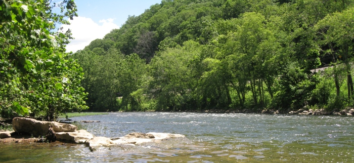 Greenbrier River 3