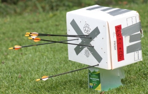 Bear Archery Brave III Accuracy