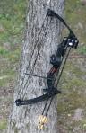 Bear Archery Brave III