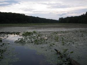 Sleepy Creek Lake 2