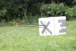 Archery Target 1
