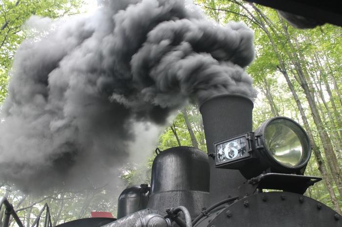 Cass Scenic Railroad 3