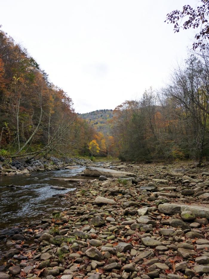 Cranberry River