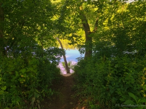 Access to the Potomac River from Antietam Creek Campground