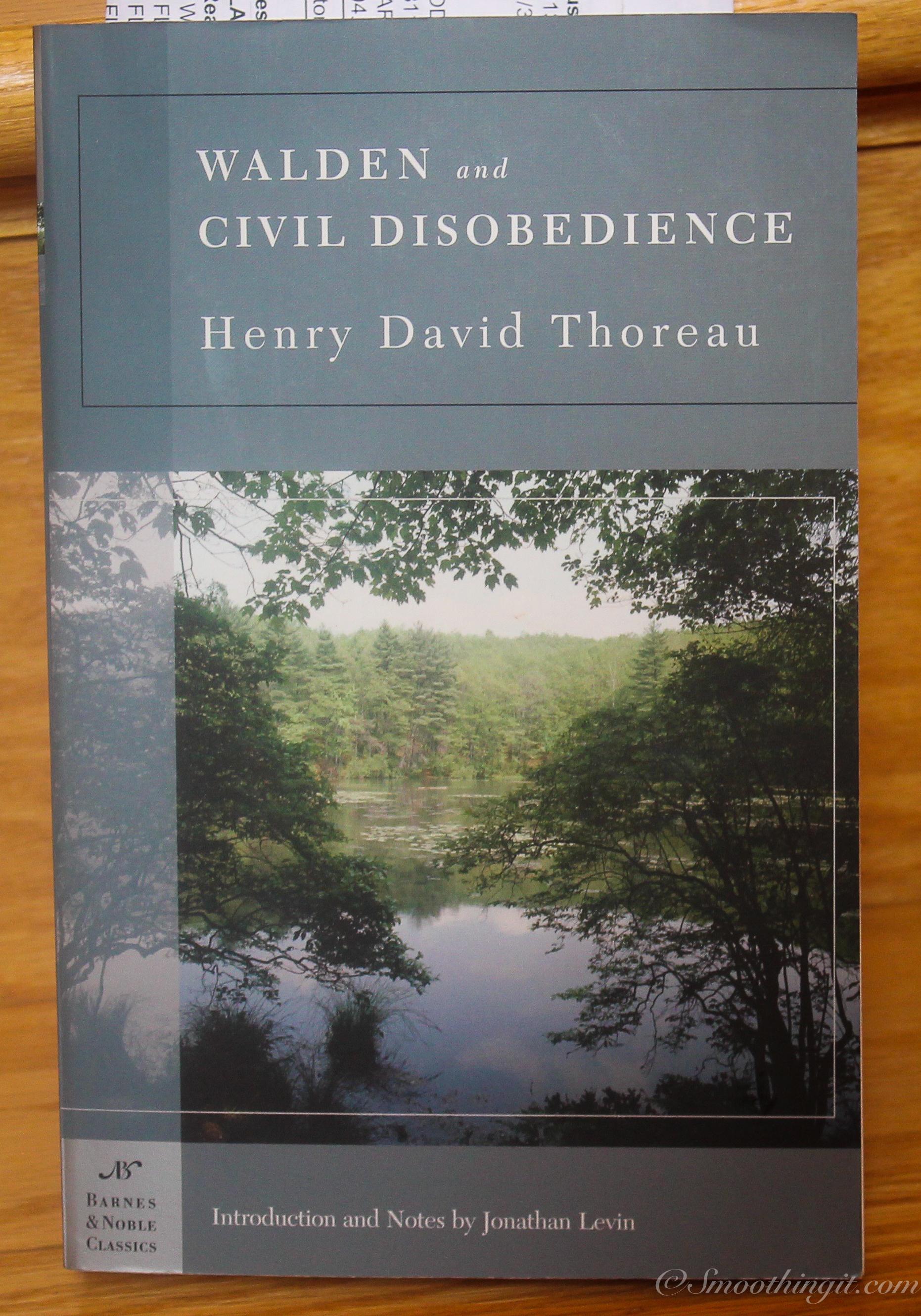 simplicity walden by henry david thoreau essay