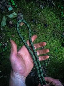 Overhand Loop 1