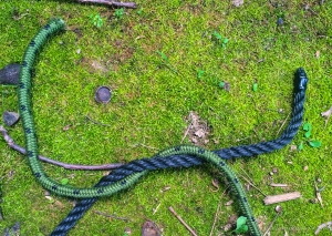 Reef Knot 2