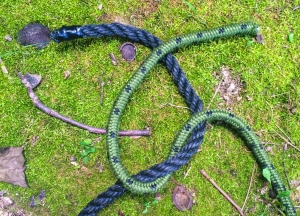 Reef Knot 3