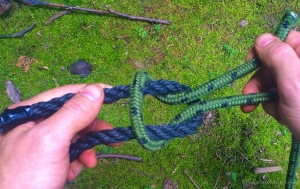 Reef Knot 5