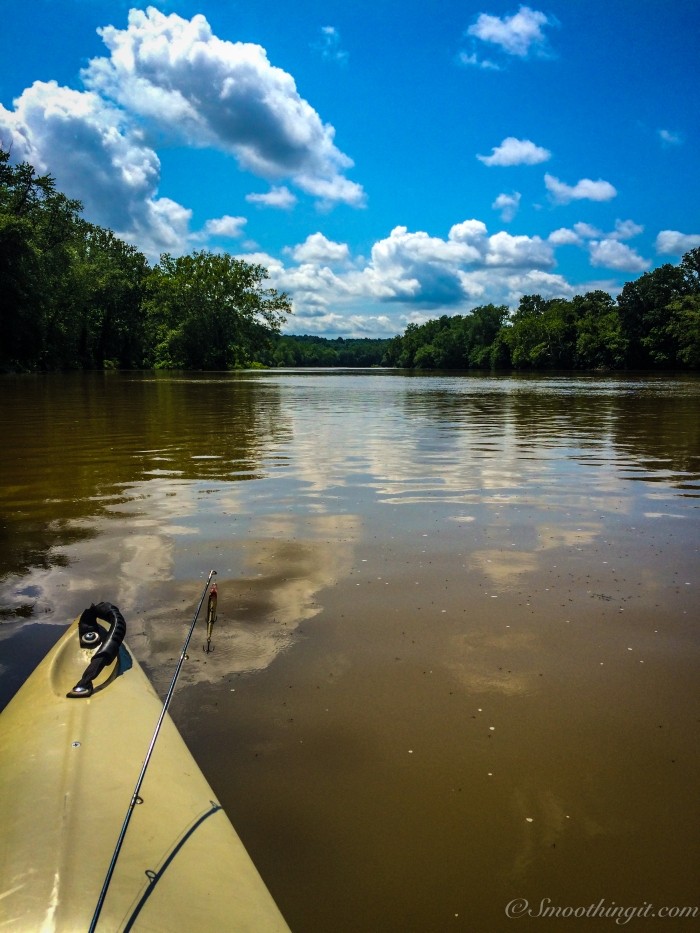 Canoeing the Shenandoah River at Shannondale Springs Wildlife Management Area