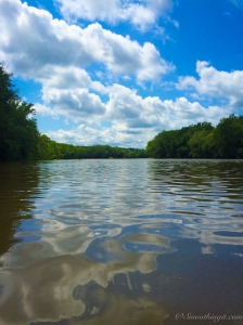 The Shenandoah River at Shannondale Springs Wildlife Management Area